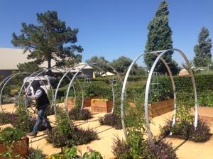 circle-art-in-garden